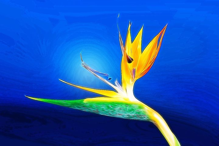 Blue Bird of Paradise - Karen Scotting Designs