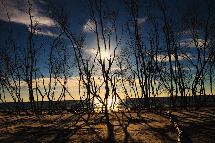 Beachscape- Shadows - Michael O'Leary