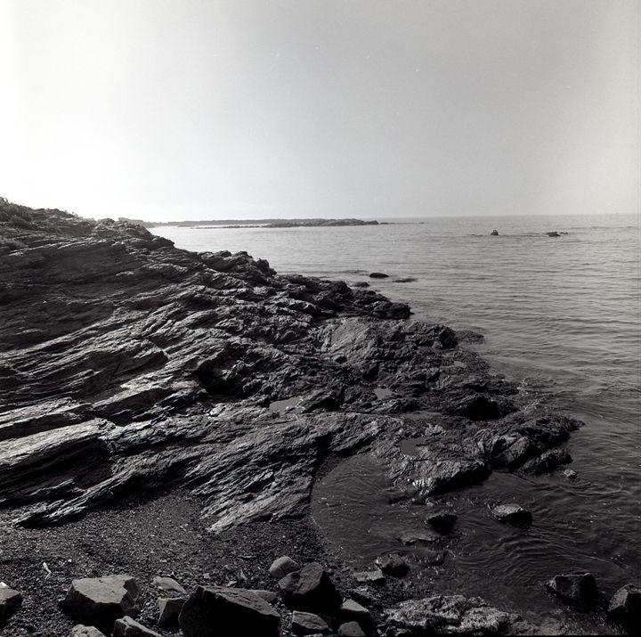 Rocky Newport Beach - Lucia Rollow Photography