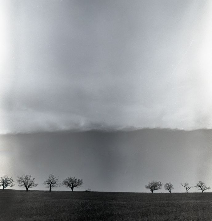 Pastoral Horizon - Lucia Rollow Photography