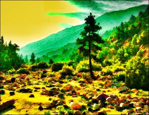 Forest Falls Dry Wash - Dennis Fehler - Gallery