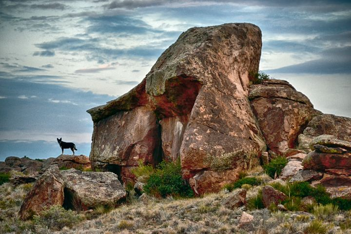 Elephant Rocks first entrance road t - John McEvoy Photographer