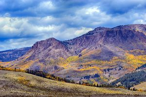 Fall colors Near Creede, Colo.