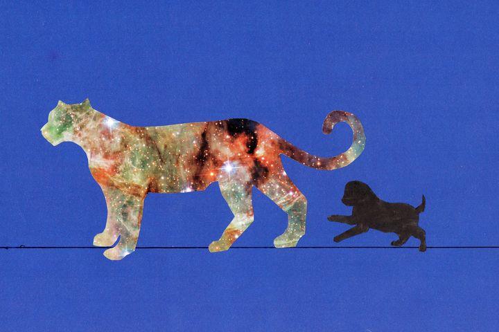 Cosmic Cheetah - Art_By_Yedvay