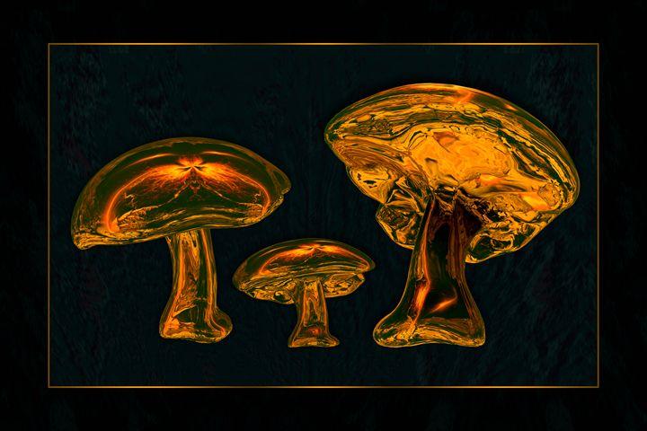 Fungi Delight II - Rybird