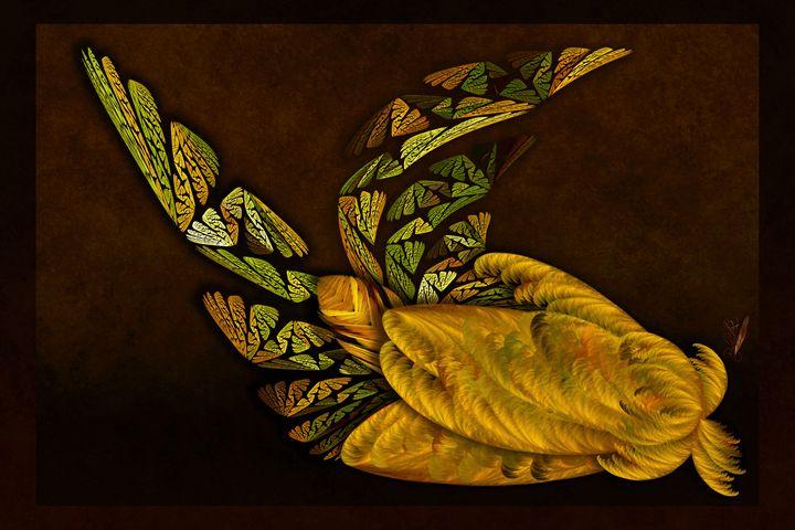 Awakening - Rybird