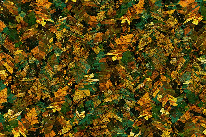 Inca Autumn - Rybird