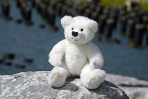 Teddy by the Piers 2