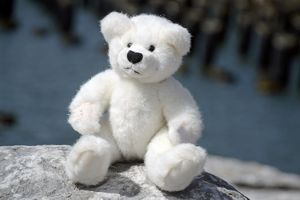 Teddy by the Piers