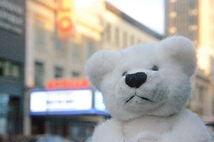 Teddy at the Apollo