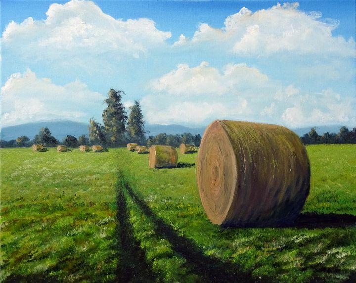 Planina field - Marjan Malovrh paintings