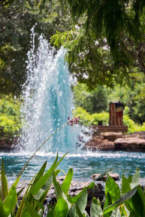 Raging Fountain - Happy Little Pixels
