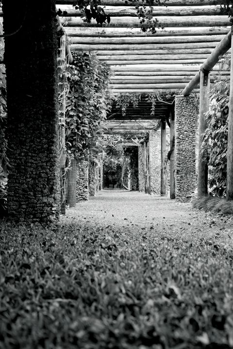 Garden Isle (Black and White) - Happy Little Pixels