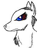 Karate wolf