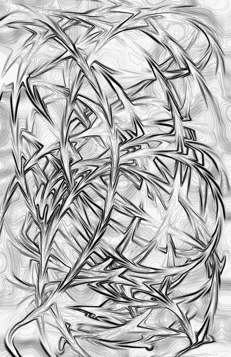 Liquify Pencil Drawing - G Photo Fine Art