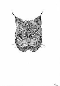 Lynx - Havion.art