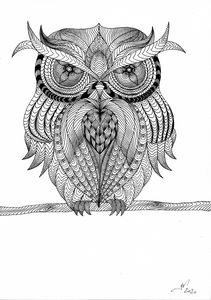 Owl - Havion.art