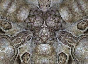 Microcosm of sand