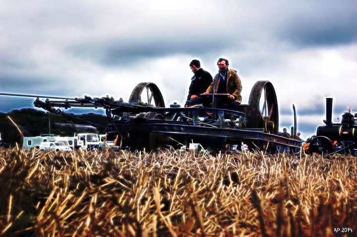 Harvesting - Alan Pitts