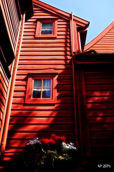 Norwegian House - Alan Pitts