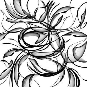 Signature Flow 4...