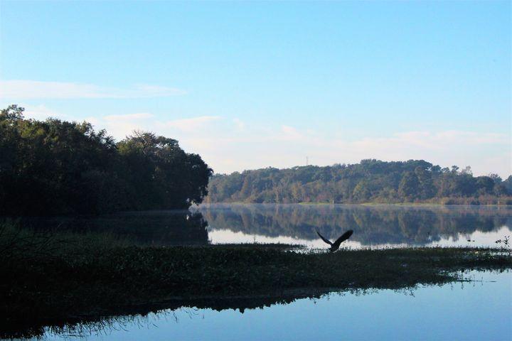 Lake Landing - Thomas Wildone Art/Photography