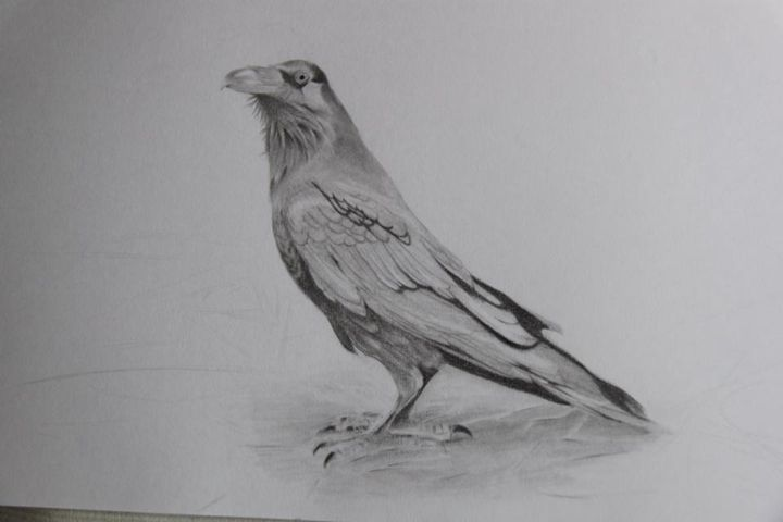 Crow No.1 / Original - WM ART