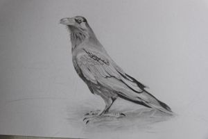Crow No.1 / Original