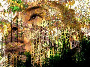 """Summer Colors In Millennium Park"""