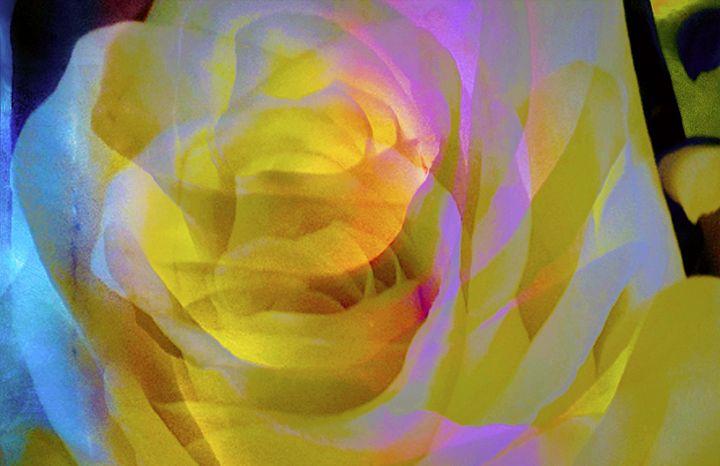 """Rosebud"" - Andre McKee"