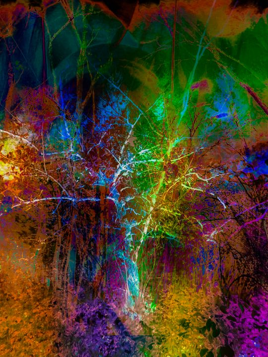 """Nature's Imprints 2"" - Andre McKee"