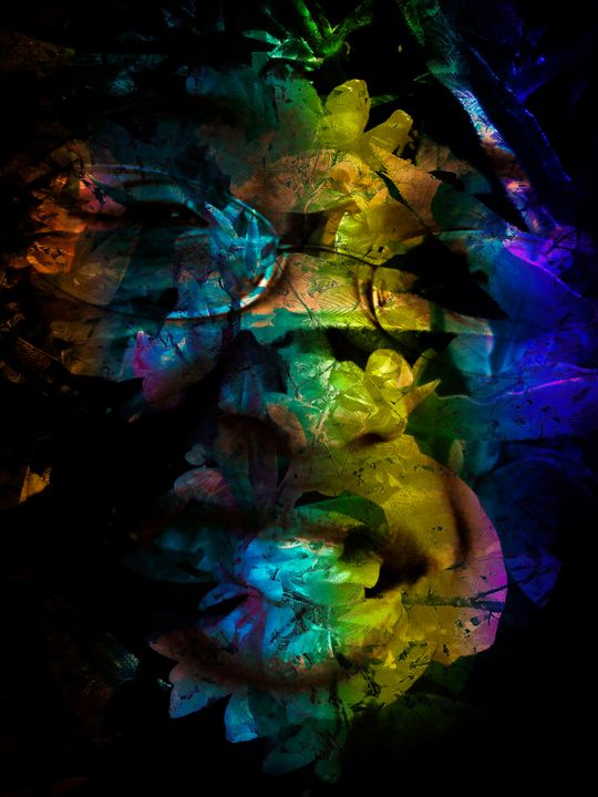 """""""Abstracted Beauty: Profiled 2 - Andre McKee"""