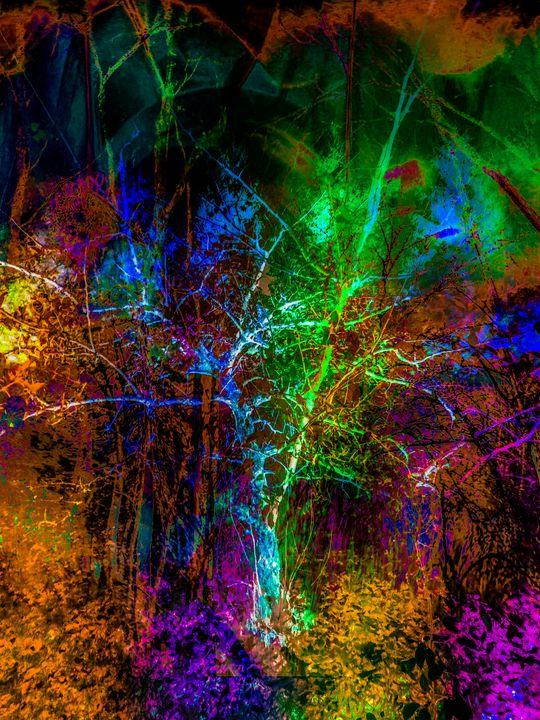 """Nature's Imprints 4"" - Andre McKee"