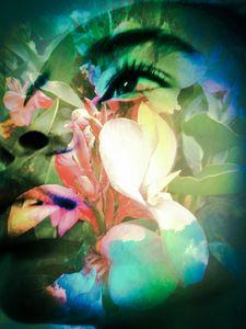 """Seed In God's Garden 8"""