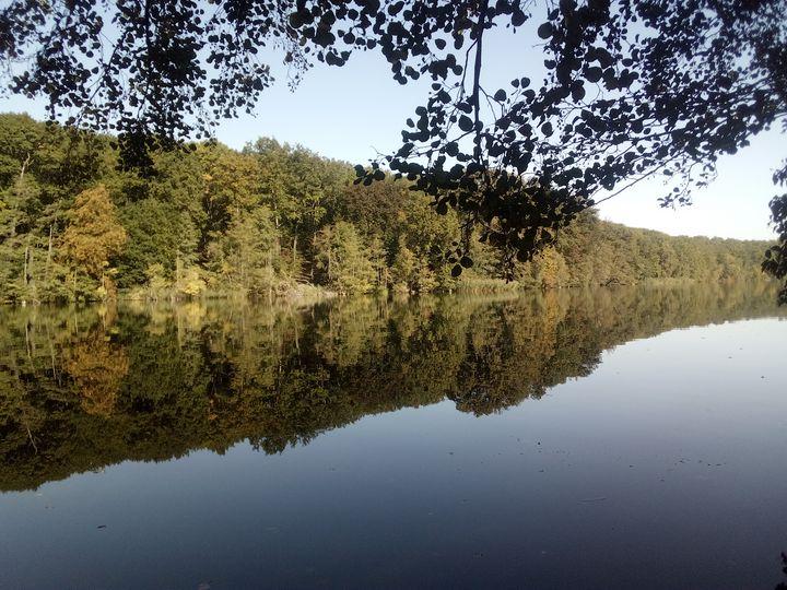 Wasserwald - Noaarts