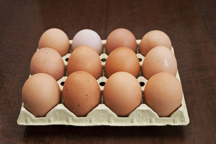Eggs of hen - Igor