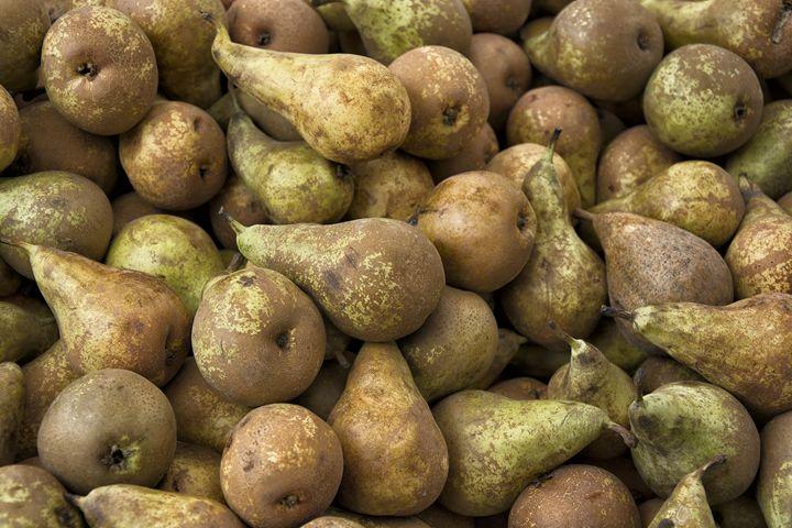 Pears - Igor