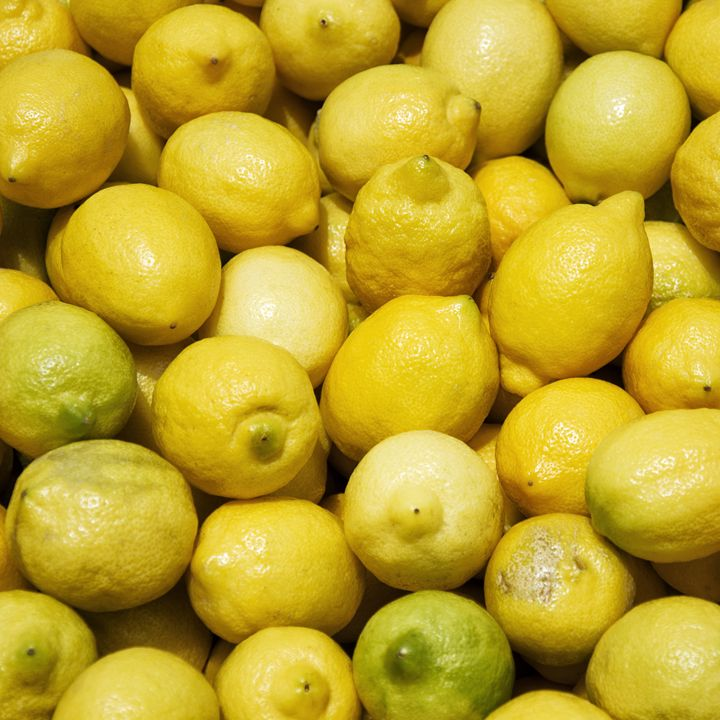 Lemons - Igor