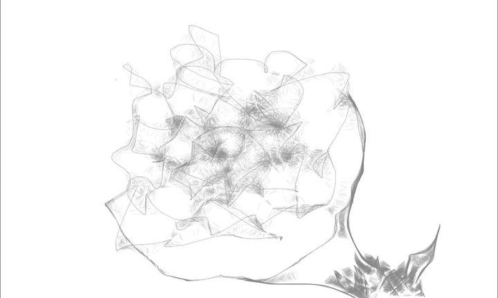 FLOWER DEBRIS - 247