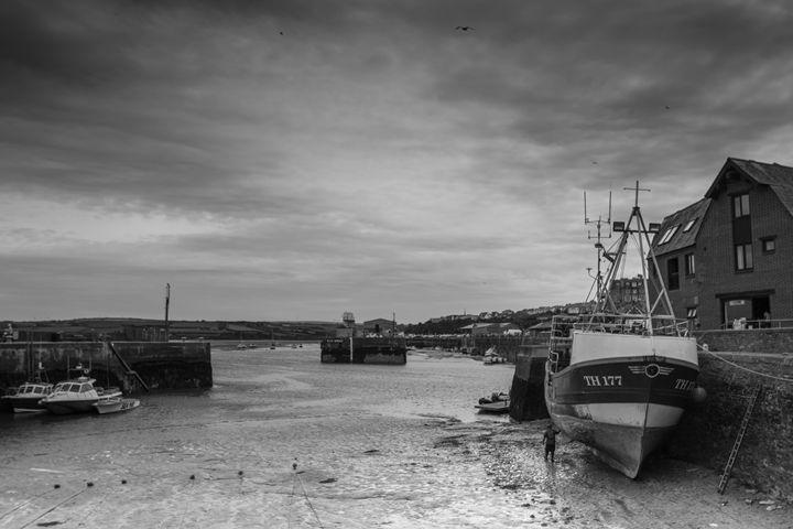 Harbour - Neil Sudhakar