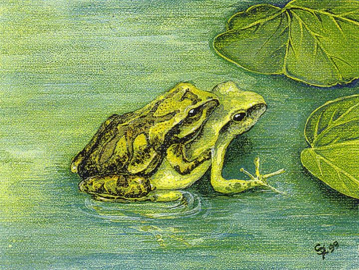 Mother Toad - Pia's Contemporary Art Collection