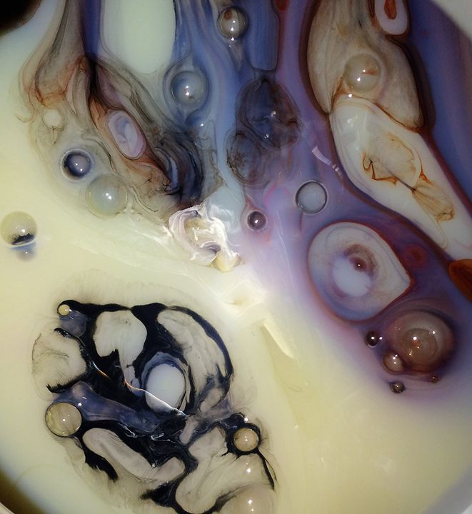 Sea Shells - SublymeDzine Gallery