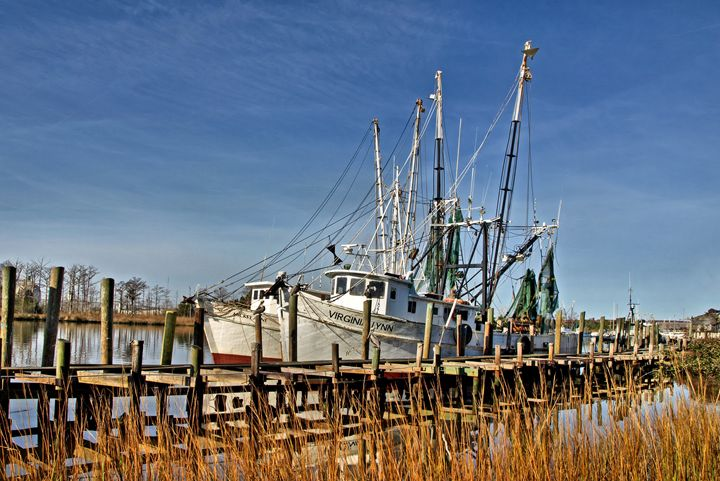 P1053760 Virginia Lynn Shrimp Boat - Stephen Ham Photography