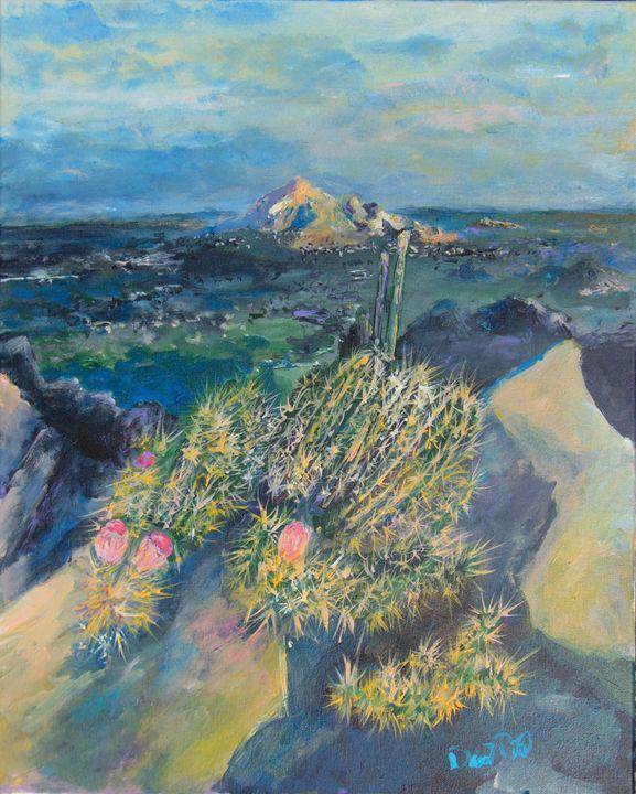 Mountain Cactus - David Pitts