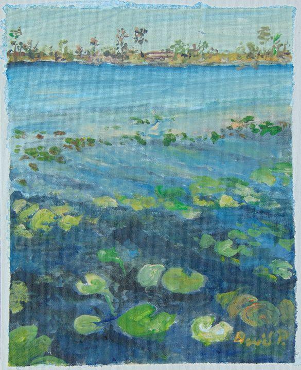 Star Island Lilly Lake - David Pitts