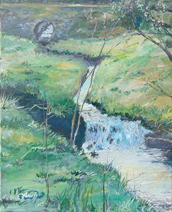 Baxkyard Stream