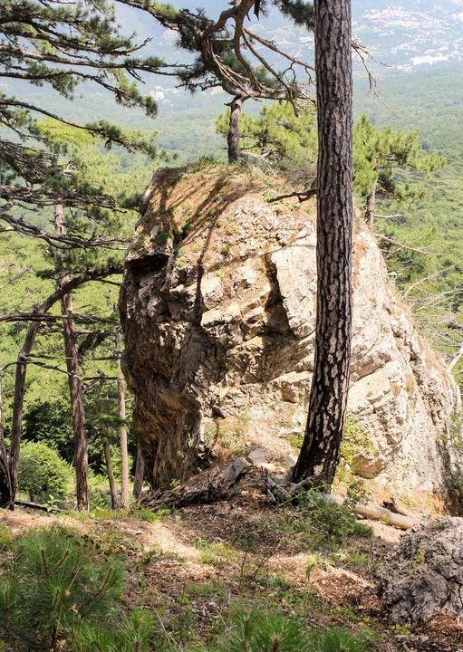 The rock between the trees. - German S