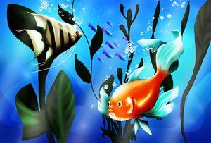 Bright aquarium fish.
