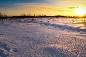 Sunset over the winter field.