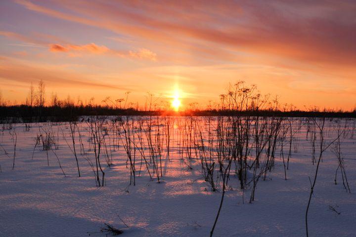 Red winter sunset. - German S